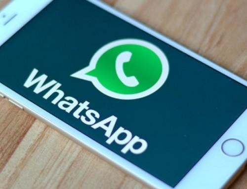 Arriva WhatsApp Business per le aziende. Così la App vuole prendersi l'eCommerce