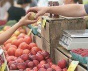 Commercio, per vendere la convenienza non basta più: ora i clienti cercano trasparenza, salute e tracciabilità